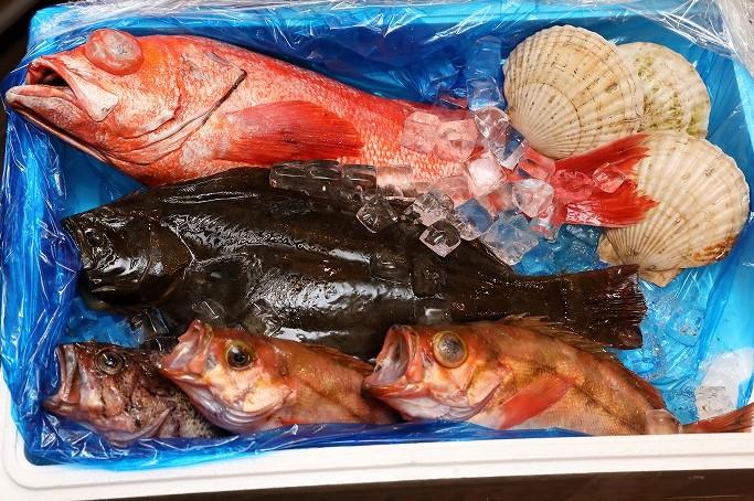 網元直送 魚介類